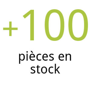 100 pièces en stock, mobigrill, loire, roanne, tournebroche
