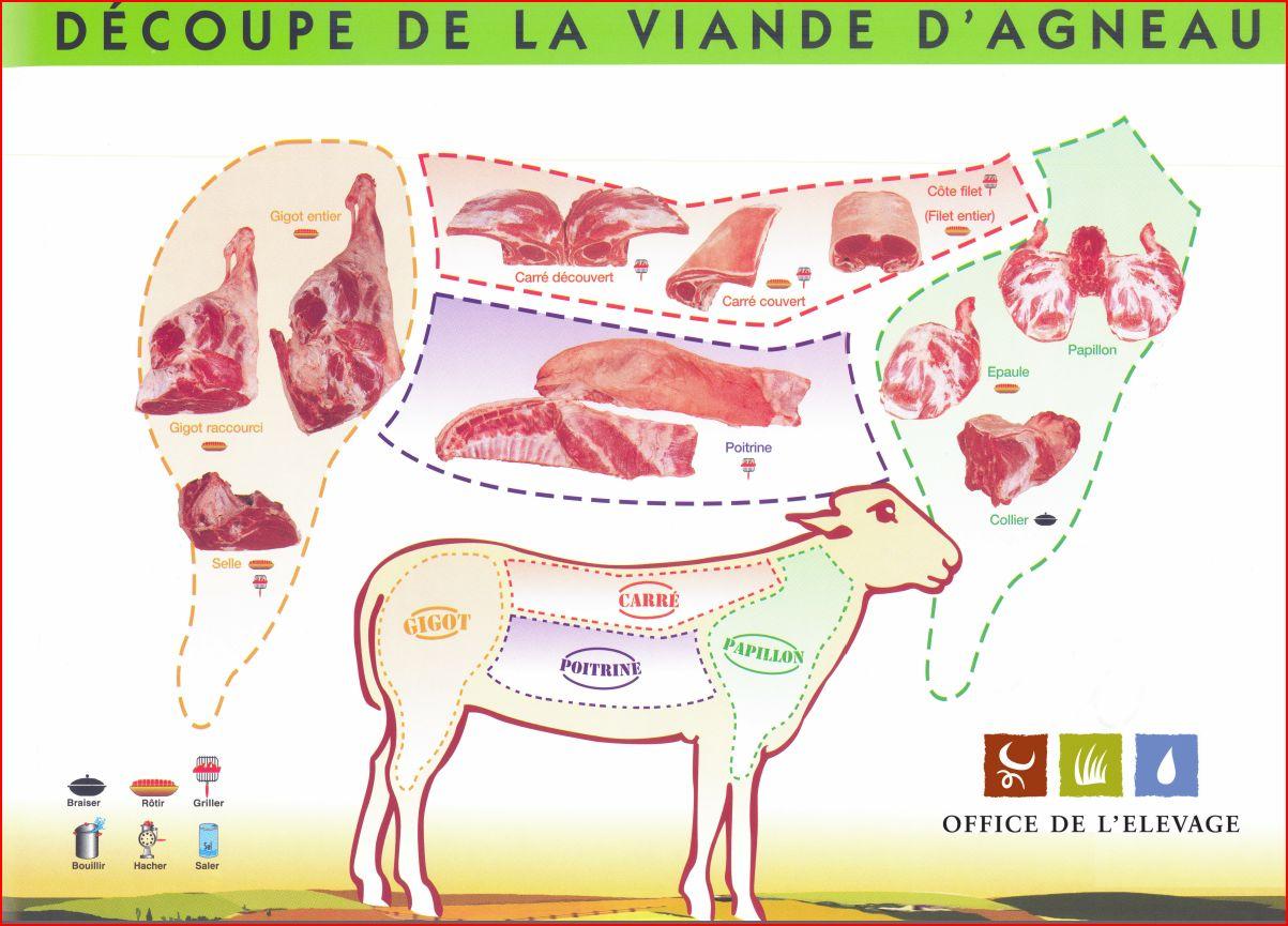 Comment bien choisir son morceau de viande mobigrill - Comment cuisiner la selle d agneau ...